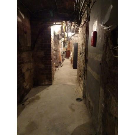 Piégée dans les caves